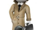 Private Investigator Appointment Software