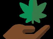 Marijuana Dispensary Scheduling Software